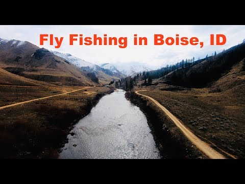 FLY FISHING For GIANT TROUT Near Boise, ID
