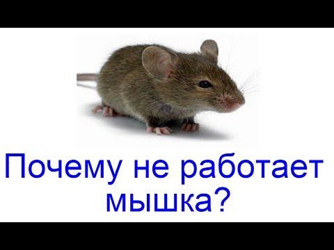 Почему не работает мышка? Как починить мышку?