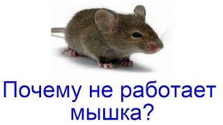 Почему не работает мышка? Как починить мышку?(Подробнее http://webtrafff.ru/pochemu-ne-rabotaet-myshka.html Компьютерная мышь – это одно из устройств ввода, без которого не..., 2015-11-30T20:13:16.000Z)