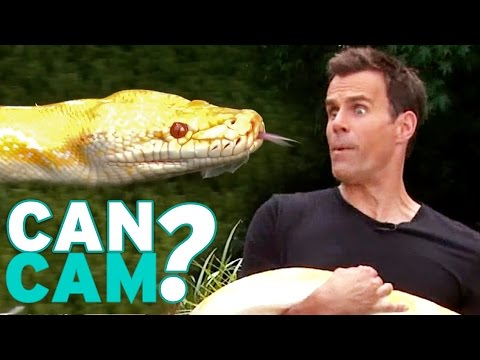 Can Cam Wrangle Tarantulas and Snakes With Bindi Irwin and Family?!  'Can Cam' Challenge Video 5