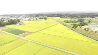 【空撮】津軽鉄道 深郷田~大沢内駅 Helicopter shot TSUGARU RAILWAY