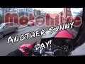 Wheelie cbr f4i - Another sunny day!