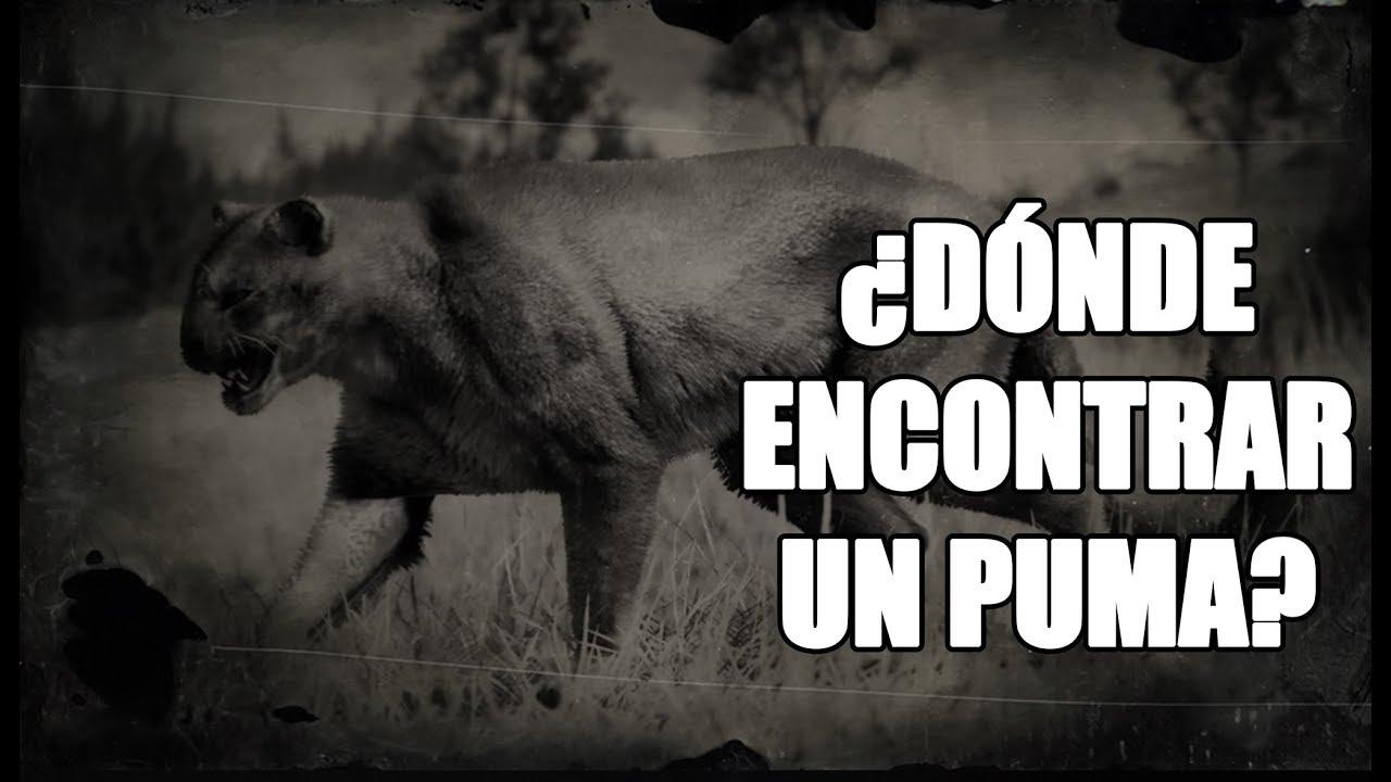 Rdr2 Puma