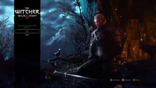 The Witcher 3: test mise en ligne