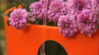 Greenbo Planters & Window Box At Diy Network Tv