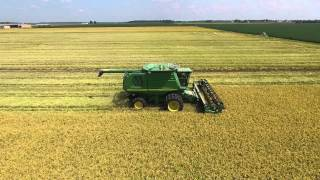 Brown Farms Rice Harvest 15
