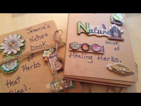 OUR NATURE JOURNALS!!!