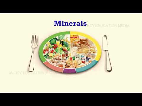 MINERALS IN FOOD