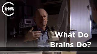 Joseph LeDoux - What Do Brains Do?