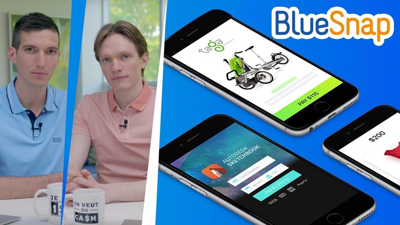 BlueSnap - ALTERNATIVE à STRIPE - Avis d'un CLIENT - Processeur de PAIEMENT pour CARTE BANCAIRE