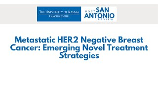 Metastatic HER2 Negative Breast Cancer: Emerging Novel Treatment Strategies