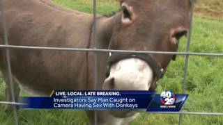 Man accused of having sex with Siloam Springs family's pet donkey
