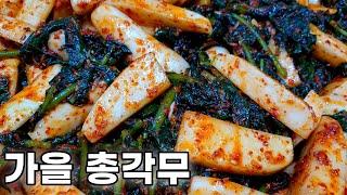 절이는 방법에 따라 김치 맛이 확 달라져요❗ 알타리무김…