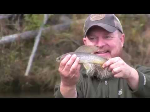 100 Miles On Beaver Creek Alaska – Fly Fishing For Arctic Grayling