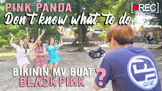 [Behind The Scene] BLACKPINK - Don't Know What To do (MV Ver. By PINK PANDA)