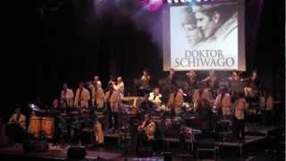Happy-Music-Sound-Orchestra HMSO - Schiwago-Melodie Moonriver