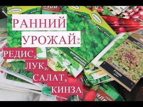 Юлия миняева салатов видео