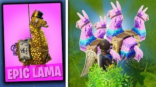 SUPER GEKKE LAMA GLITCH IN FORTNITE!