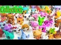 LPS Collection Tour Haul Series Videos Littlest Pet Shop Mommies School Sharks Cookieswirlc Part 1