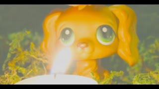 LPS Candles Music Video