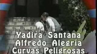 AGUJETAS DE COLOR DE ROSA: ENTRADAS DE TELENOVELA  (1995)