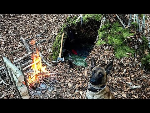 100% Natural Survival Shelter Solo Winter Bushcraft Overnighter with Dog