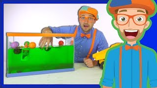 blippi sink or float   cool science experiment for kids