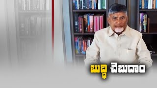 Chandrababu Video Conference With TDP Leaders | Panchayat Elections