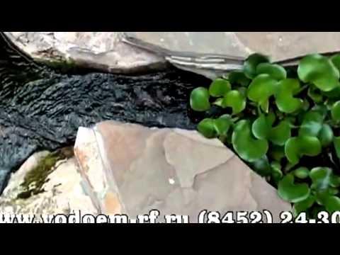 видео: Ландшафтный дизайн. Искусственные водоемы.