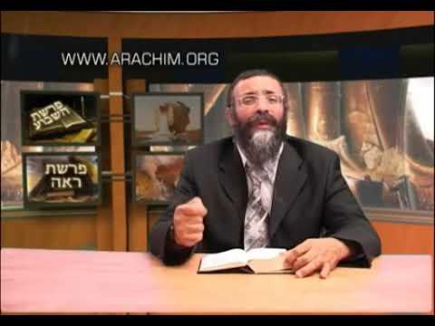הרב מיכאל לסרי - פרשת ראה - הברה והקללה - איך אתה מסתכל על החיים שלך?!