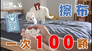【豆漿實測】一次丟100顆擦布 這會瘋掉!!