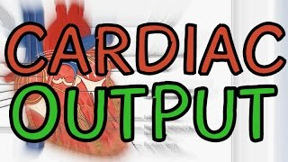 Biology Help: What is Cardiac Output? w/ example
