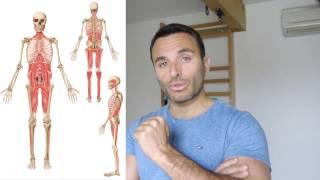 Douleurs de dos et sacro iliaque