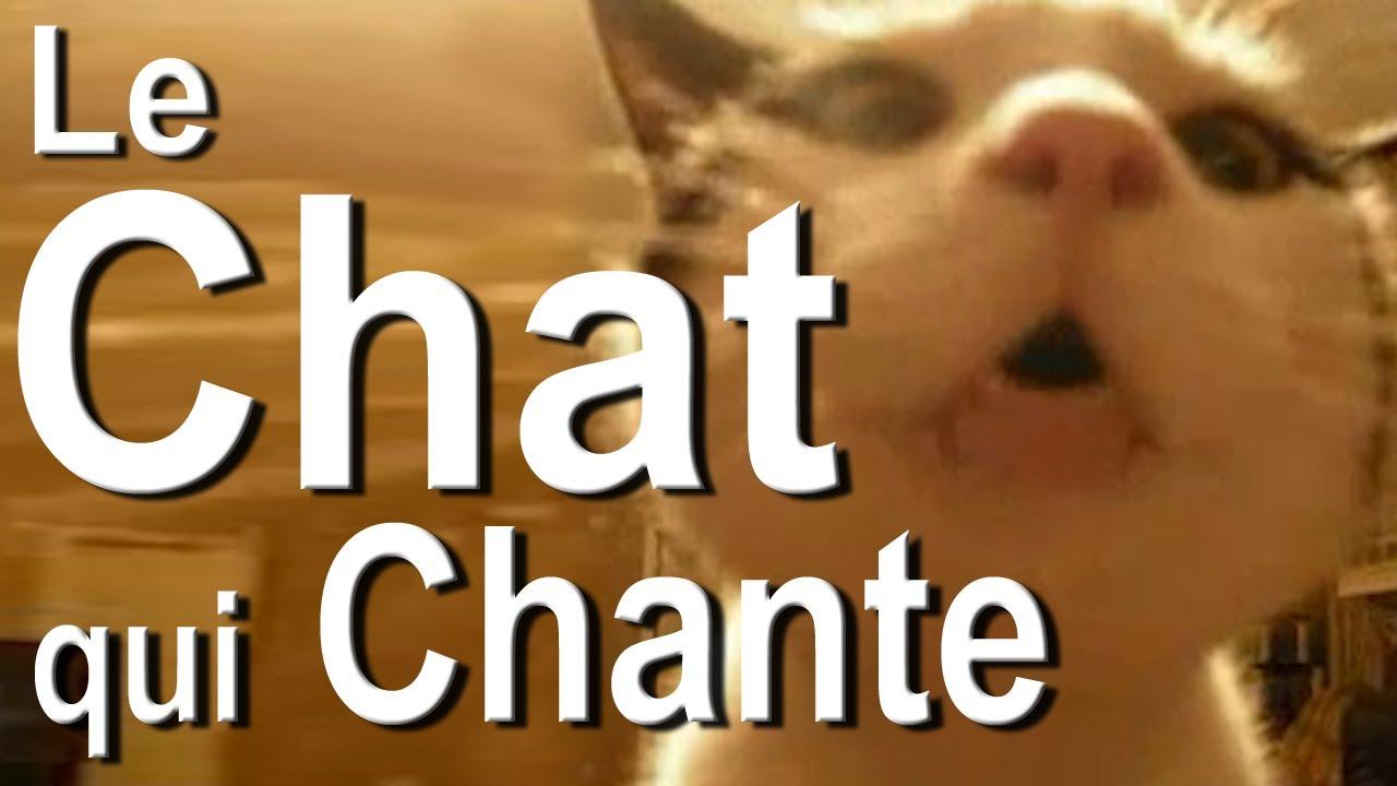 chat porno free kuumaa naintia