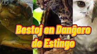 Bestoj en Danĝero de Estingo #Esperanto #Venezuela #EsperantoLives