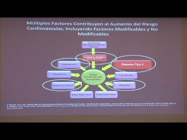 DISLIPIDEMIA Y RIESGO CARDIOVASCULAR EN DIABETES - DR.  JOSE LUIS ACCINI