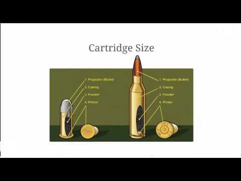 Bullet Comparison Calibers and Bullet Measurements Explained - YouTube