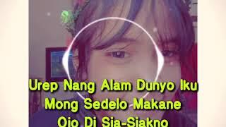 Download Story WA_Terbaru°Ku kan SeLalU AdA Di DeKaT mU