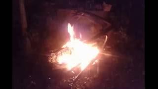Котёнок смотрит как горят стулья