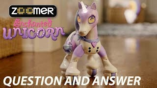 Zoomer | Enchanted Unicorn | Question and Answer