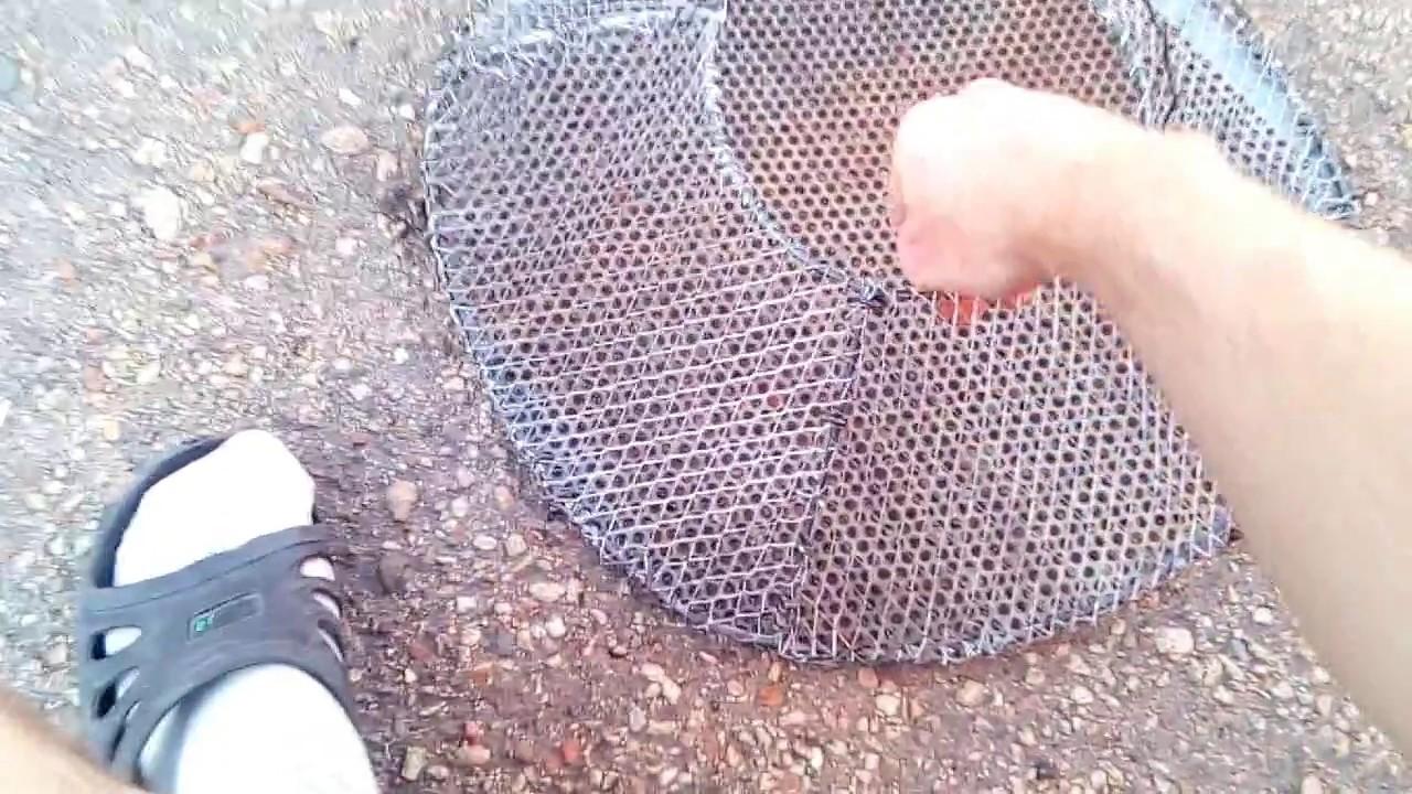 Раколовка своими руками схема видео фото 22