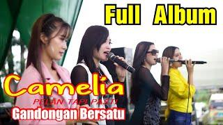 Download FULL ALBUM CAMELIA PELAN TAPI PASTI GANDONGAN BERSATU-KUDUS