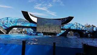SeaWorld ,la Orca