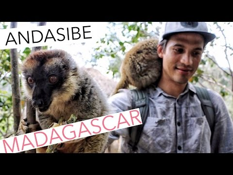 Madagascar: Andasibe, Analamazaotra, Mantadia and Antananarivo. How to travel around?