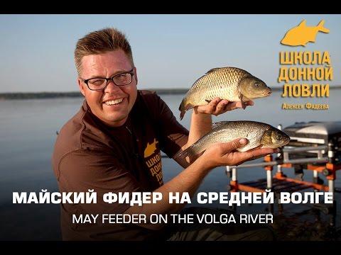 рыбалка на фидер для начинающих на волге