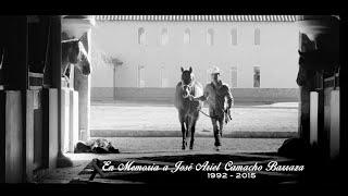 Te Metiste | Ariel Camacho y Los Plebes Del Rancho | DEL Records
