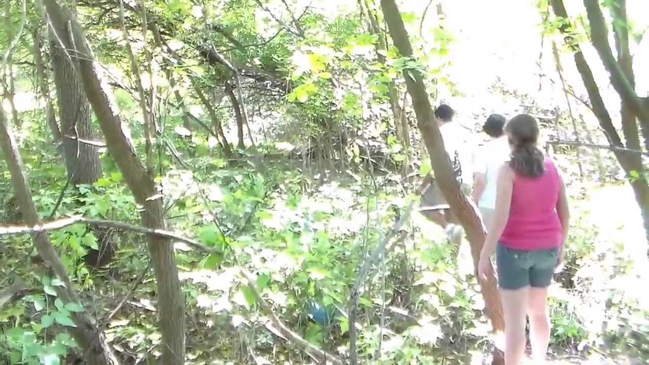 100 Real Bigfoot Sighting Binghamton New York Youtube