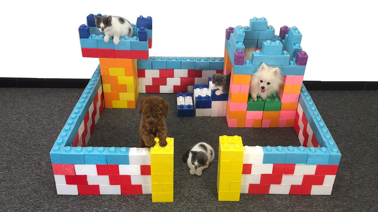 DIY - How To Build Dog House For Pomeranian Puppies From Lego Block Toy | Cute Puppy Kitten | MR PET