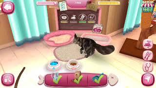 Cat hotel #1- мой приют для кошек .Ухаживаю за кошечками .видео для детей