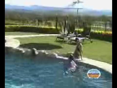 Scenic Rim View Cottages - Romantic Getaway Near Brisbane & Gold Coast